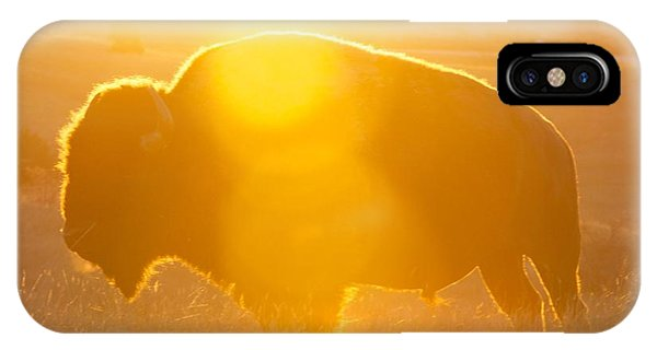 Buffalo Sunrise IPhone Case