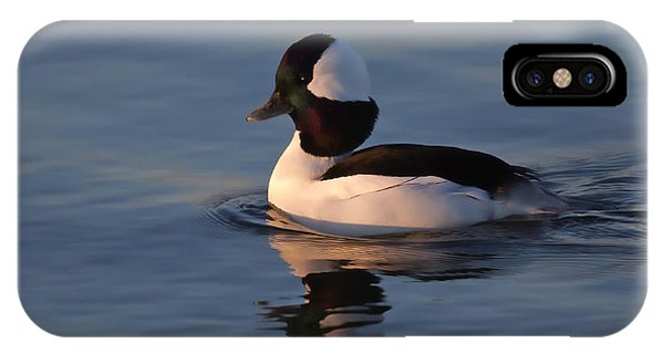 Bufflehead Duck IPhone Case