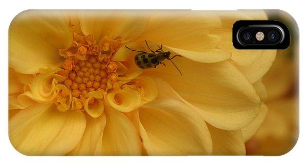 Bugged Dahlia IPhone Case