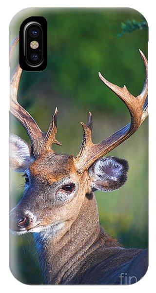 Buck Posing IPhone Case