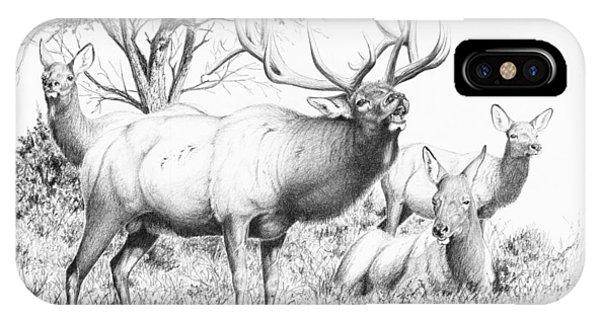 Bull And Harem IPhone Case