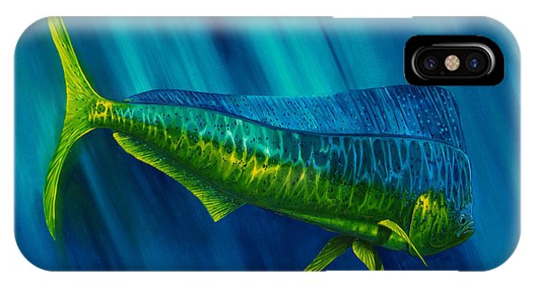 Bull Dolphin IPhone Case
