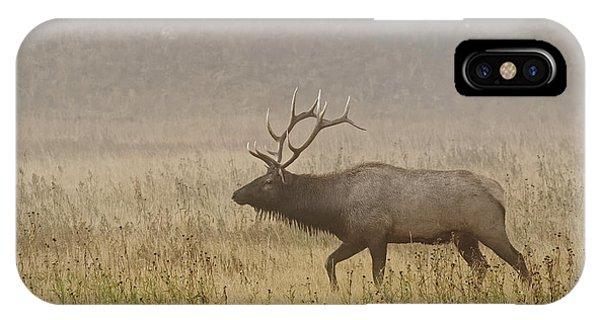 Bull Elk On Foggy Morning Along Madison Phone Case by Adam Jones