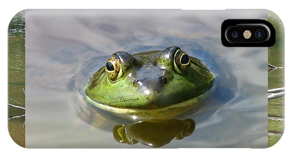 Bull Frog And Pond IPhone Case