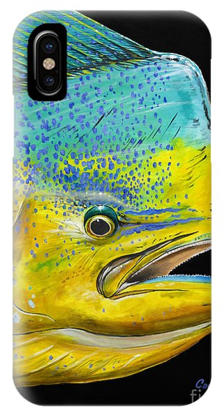 Bahamas iPhone Case - Bull Head Off0033 by Carey Chen