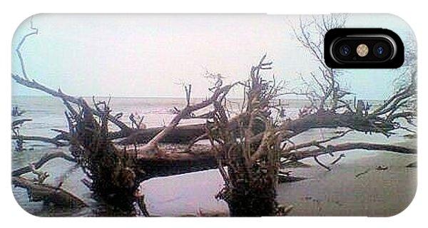 Bull Island Phone Case by James Potts
