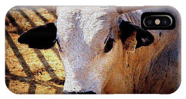 Bull Riders - Nightmare - Rodeo Bull IPhone Case
