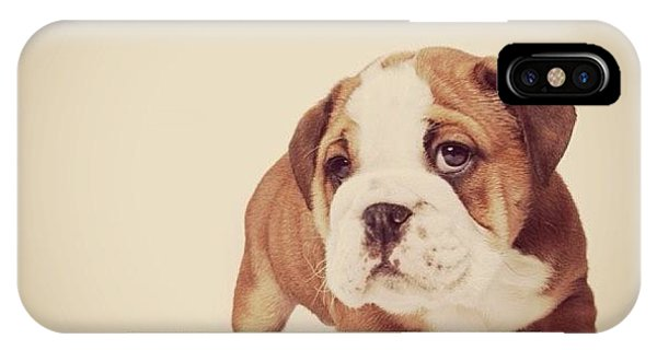 Bulldog Pup Phone Case by Ritchie Garrod