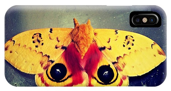 Bullseye Moth IPhone Case
