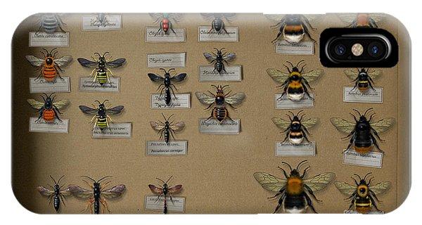 Bumblebees - Wild Bees - Wesps - Yellow Jackets - Ichneumon Flies - Apiformes Vespulas Hymenopteras  IPhone Case