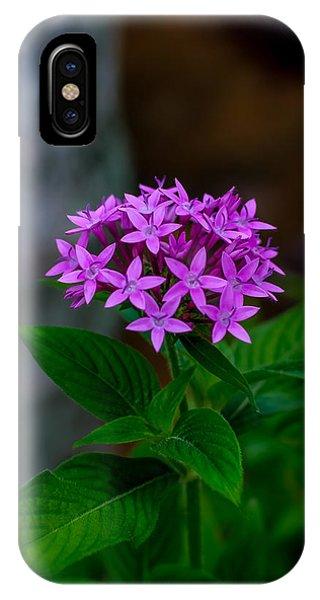 Bundle Of Joy IPhone Case