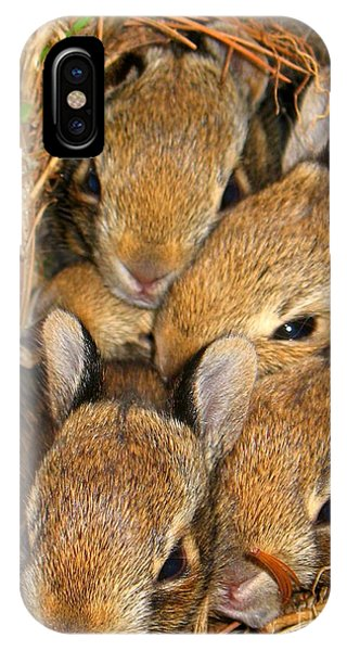 Bunny Babies IPhone Case