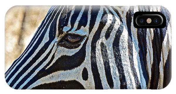 Burchell's Zebra's Face In Kruger National Park-south Africa IPhone Case