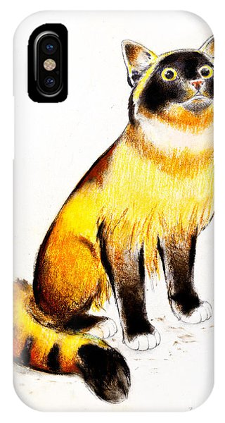 Burmese Cat Phone Case by Kurt Tessmann