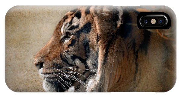 Tiger iPhone Case - Burning Bright by Betty LaRue