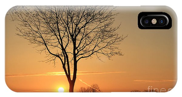 Burning Tree In The Sunrise IPhone Case