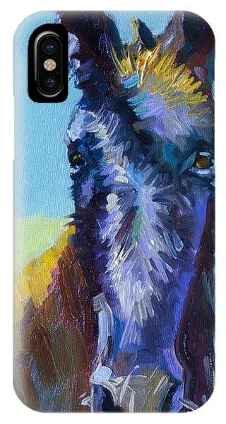 Burro Stare IPhone Case