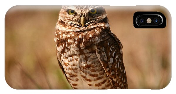 Burrowing Owl Impressions IPhone Case