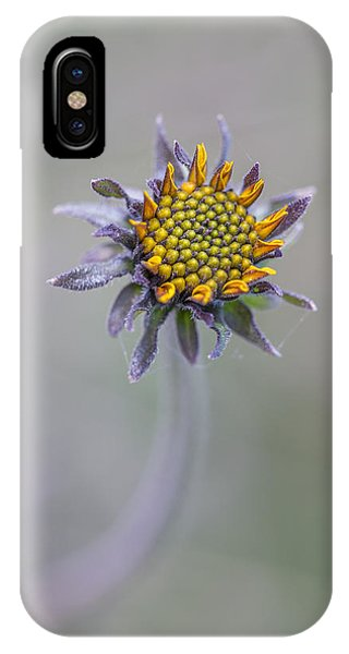 Bush Sunflower Opening IPhone Case