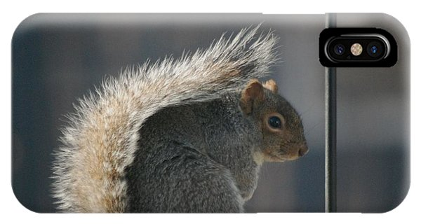 Bushy Tail IPhone Case