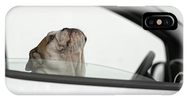Pet iPhone Case - Busted! For Speeding by Gert Van Den
