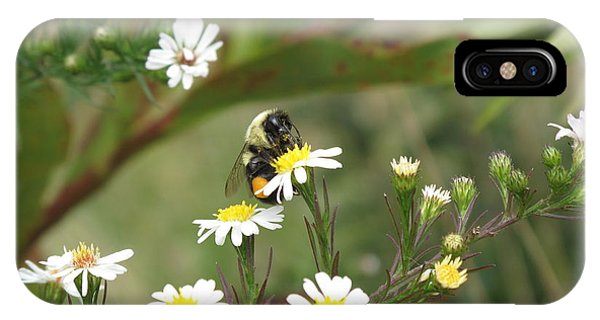 Busy Bee IPhone Case