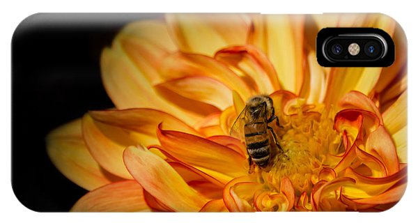 Busy Bee Dahlia IPhone Case