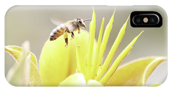 Busy Bee Phone Case by Luna Curran