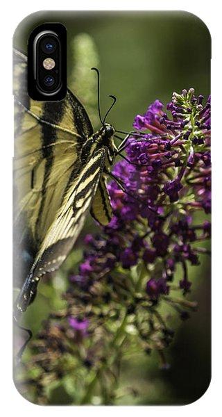 Butterflies Along The Blue Ridge IPhone Case