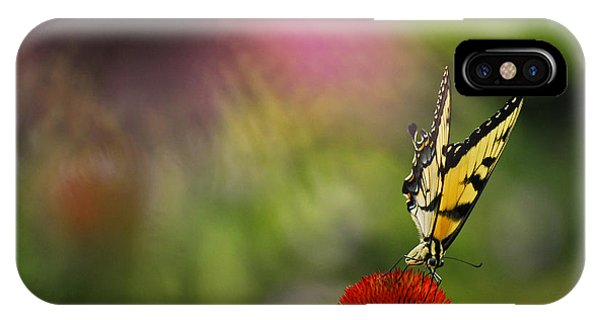 Butterfly And Cone Flower IPhone Case