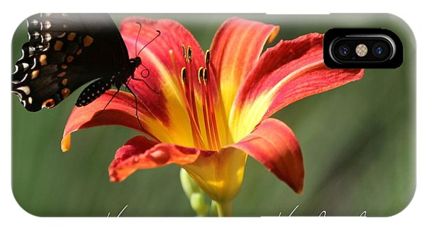 Butterfly And Lily Holiday Card IPhone Case