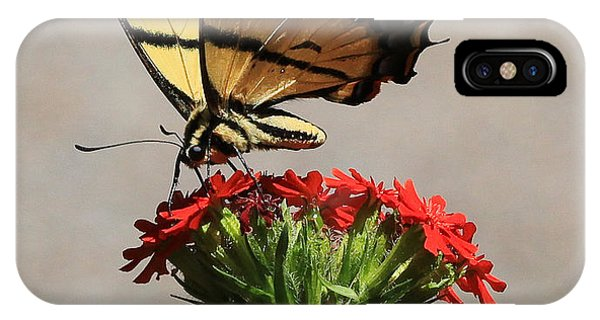 Butterfly And Maltese Cross 1 IPhone Case