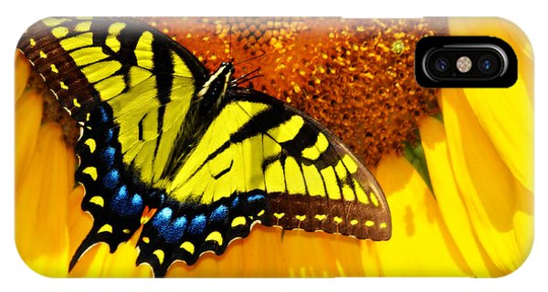 Butterfly And The Sunflower IPhone Case
