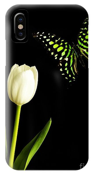 Black Tulip iPhone X Case - Butterfly And Tulip by Edward Fielding