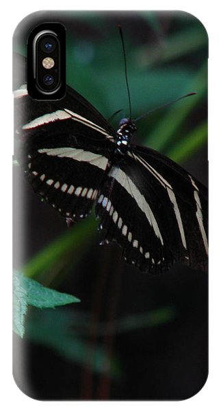Butterfly Art 2 IPhone Case