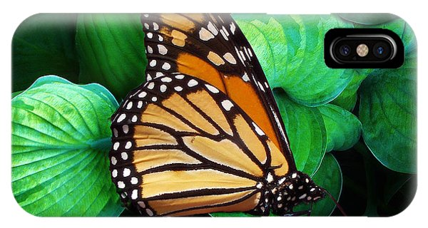 Butterfly Be Still IPhone Case