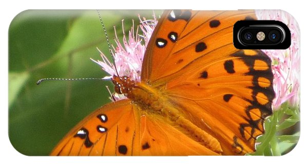 Butterfly Butterfly 2  IPhone Case