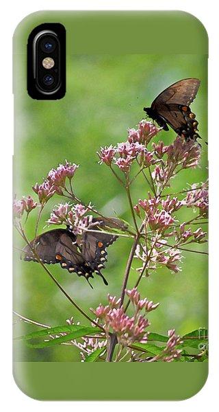 Butterfly Duet  IPhone Case