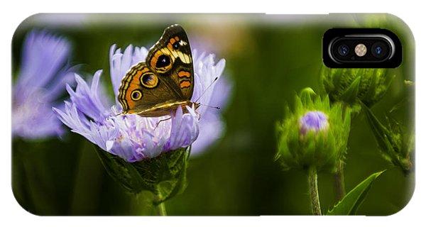 Butterfly In Field IPhone Case