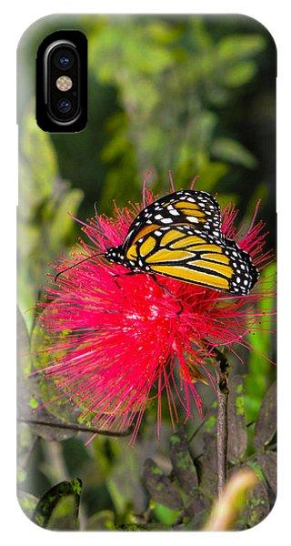 Butterfly In Flower Bush IPhone Case