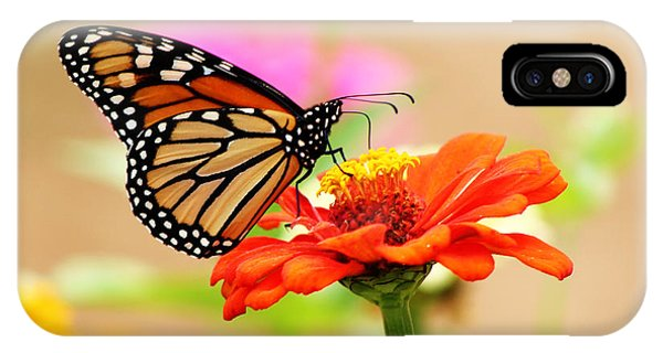 Butterfly Lunch IPhone Case