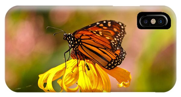 Butterfly Monet IPhone Case
