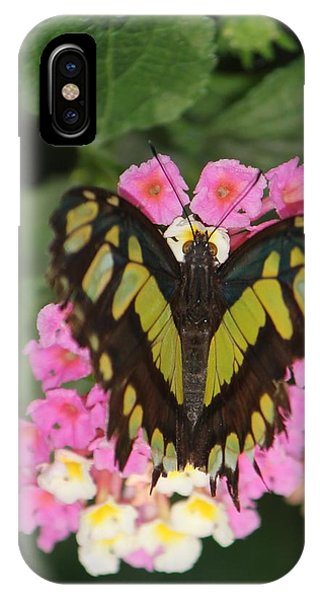 Butterfly Of Love IPhone Case