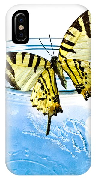 IPhone Case featuring the photograph Butterfly On A Blue Jar by Bob Orsillo