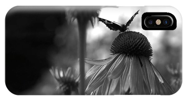 Butterfly On Echinacea Phone Case by Maeve O Connell
