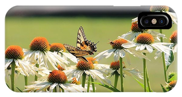 Butterfly On Echinacea IPhone Case