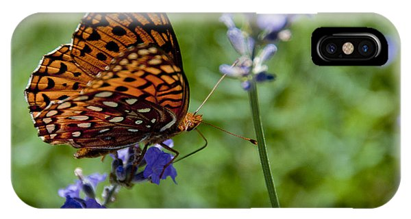 Butterfly Visit IPhone Case