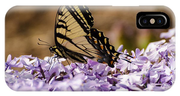Brian Rock iPhone Case - Butterfy On Flowers by Brian Rock