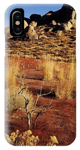 Buttermilks - Red Brush IPhone Case