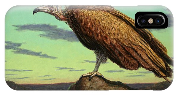 Buzzard iPhone Case - Buzzard Rock by James W Johnson